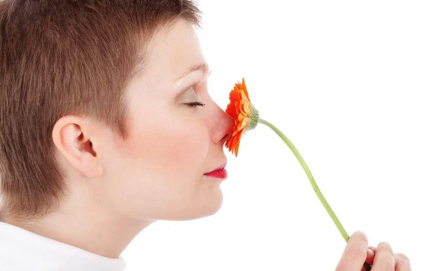 аромат мирис миризма обоняние