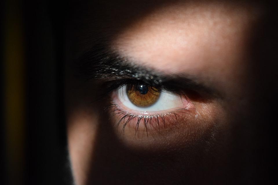 шпионин шпиониране агент око