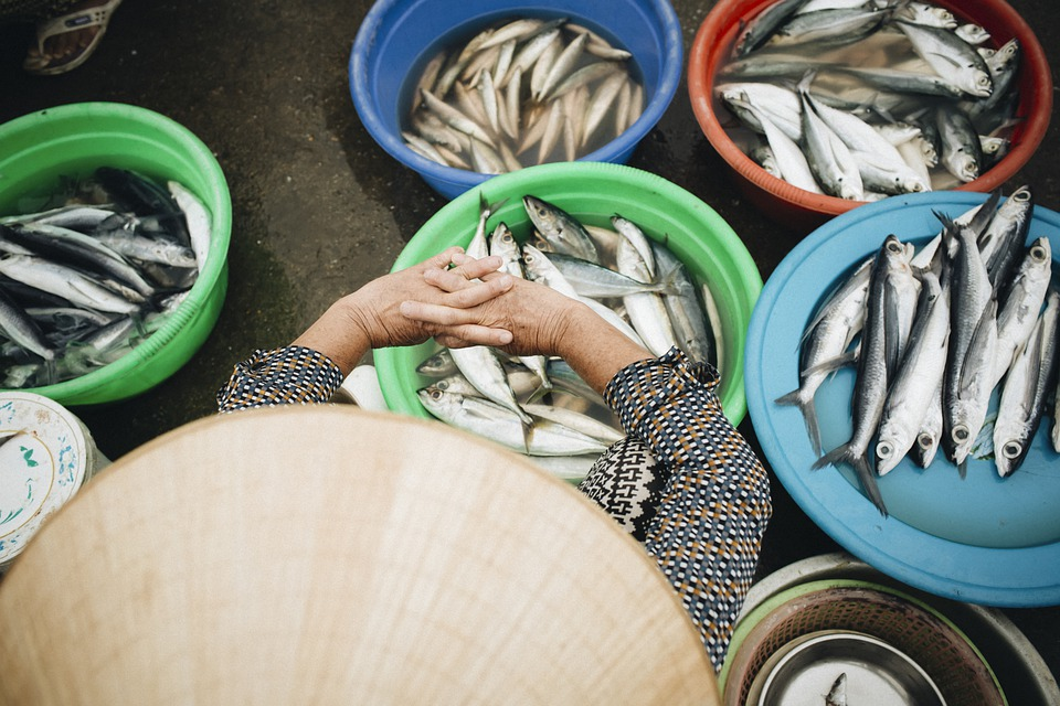 рибен пазар риба пазар