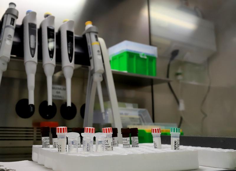 лаборатория тест проби коронавирус БГНЕС
