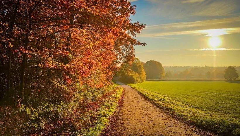 есен слънце септември