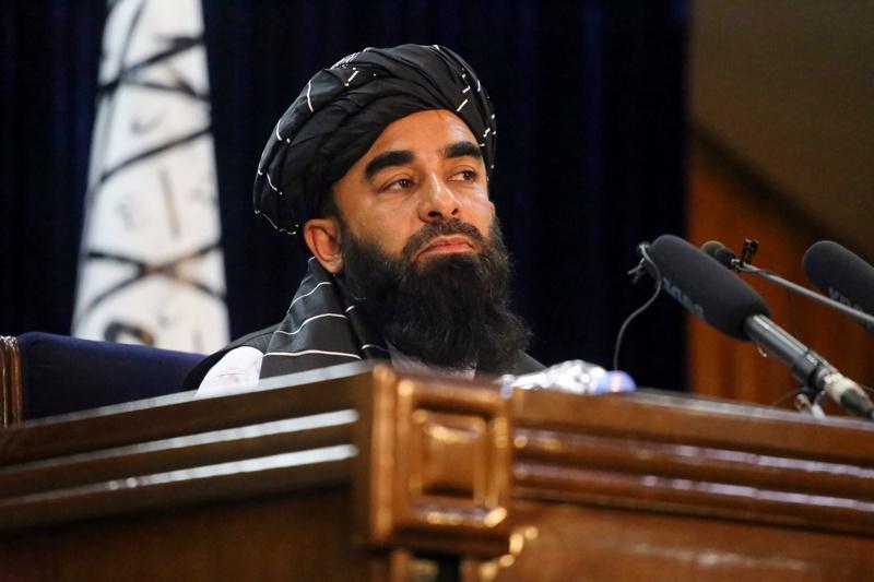 талибани брада