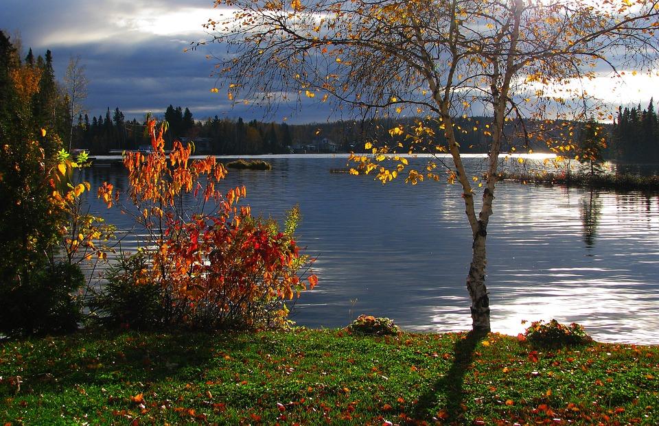 есен облаци бреза