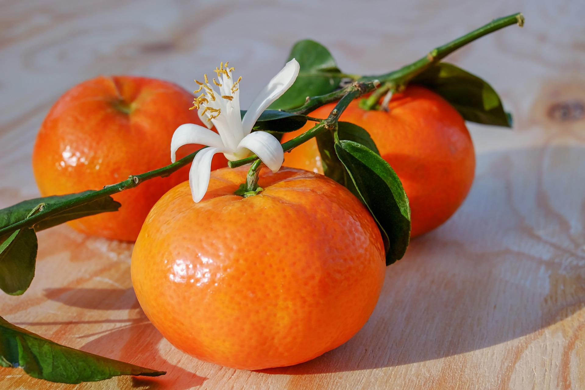 Pixabay мандарини