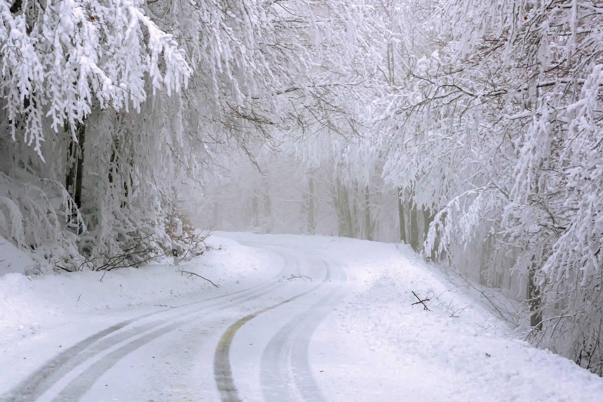 сняг, път
